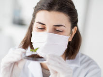 Close up of scientist with plant and soil in lab Stock Photography