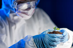 Close up of scientist with plant and soil in lab Stock Photo