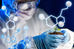 Close up of scientist with plant and soil in lab Royalty Free Stock Photos