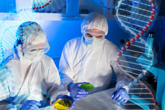 Close up of scientists with test samples in lab Stock Image