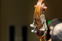 Close up of the Scroll - peg box of a cello during a live performance. Indoors stock photo