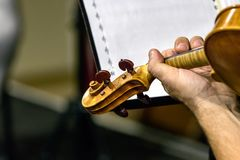 Close up of the Scroll - peg box of a violin during a live performance. Indoors stock image