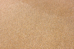 Close up of sea beach sand or desert sand. For texture and background Stock Images
