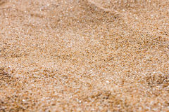 Close up of sea beach sand or desert sand Royalty Free Stock Photography