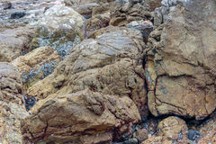 Close-up of sea rocks Royalty Free Stock Images