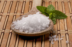 Close up of sea salt. Royalty Free Stock Photography