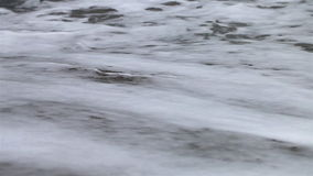 Close up of sea shore at beach stock video