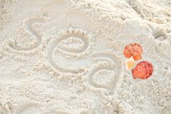 Close-up sea word on sand with shell. Concept vacation to the beach Stock Photo