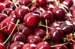 Close up. Seasonal harvest of sweet cherries. A pile of freshly washed burgundy berries