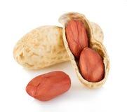 Close-up secado dos amendoins em um fundo branco Fotografia de Stock Royalty Free