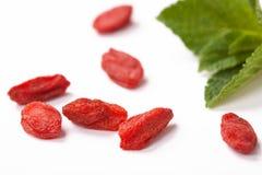 Close up secado vermelho das bagas do goji Fotos de Stock Royalty Free