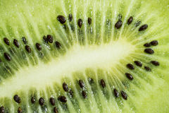 Close up of seeds and fresh kiwi slice. Green fruit Royalty Free Stock Photo