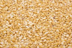 Husked brown gram pulse. Close up of seeds of husked brown gram pulse Stock Photo