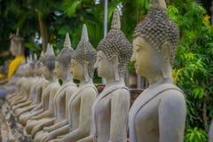 Close up of selective focus Ancient Buddha Statue at WAT YAI CHAI MONGKOL, The Historic City of Ayutthaya, Thailand.  Stock Images
