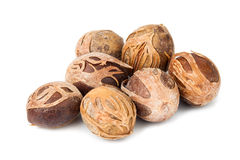Close up and selective focus on the dried Nut Meg at foreground Stock Images