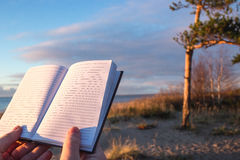 Close up selective focus of a man hands holding notebook outdoor near pine trees and sea coast stock photography