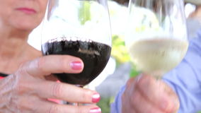 Close Up Of Senior Couple Toasting With Wine Glasses stock video