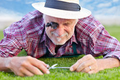 Close up of senior gardener cutting grass 4 Stock Photo