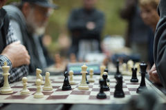 Close up of senior men playing chess. Royalty Free Stock Image