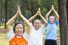 Close-up of seniors doing gymnastics in the park. Close-up of asian seniors doing gymnastics in the park stock photo