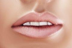 sexual full lips. Natural gloss of lips. stock photos