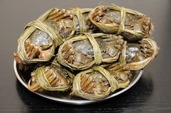 Close up of shanghai crabs Stock Images