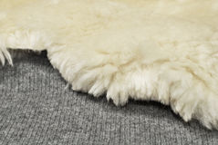Sheep fur on wool texture Stock Photo