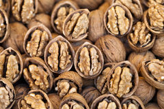 Close-up of shelled walnuts Stock Images