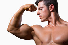 Close-up of a shirtless muscular man flexing muscles Stock Photography