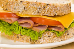 Close-up shoot of a Sandwich with rich Salad Stock Images