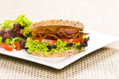 Close-up shoot of a Sandwich with rich Salad Stock Photos