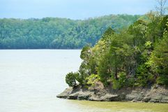 Close up shoreline view Royalty Free Stock Image