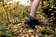 Close-up shot of beautiful female legs in black shoes, which stand in the forest on a worn out leaves and moss in autumn.  stock images