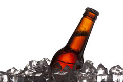 Close up shot of beer bottle and ice cubes Stock Photo