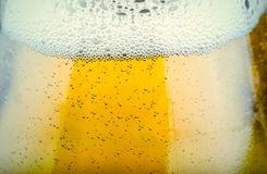 Close up shot of beer glass Stock Photography