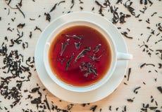 Close up shot of black tea cup. Close shot black tea cup stock photos