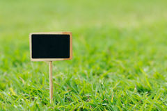 Close up shot blank wooden sign on green grass shallow depth of Royalty Free Stock Photos