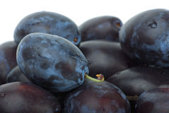 Close-up shot of blue plums Royalty Free Stock Images