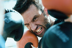 Close up shot of boxer in a fight from the point of view of riva Royalty Free Stock Photos