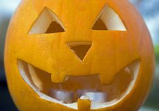 A Carved pumpkin Jack o` Lantern shot close up. A close up shot of a carved halloween pumpkin Jack o` Lantern Royalty Free Stock Photo
