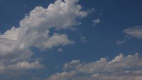 Cumulus clouds on the background of a clear blue sky. A close-up shot of cumulus clouds on the background of a clear blue sky stock footage