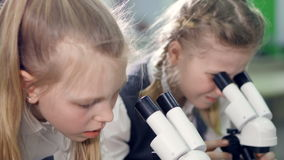 The close-up shot of the elementary school girls, looking in the microscopes. 4K. The close-up of the girls, looking in the microscopes stock footage