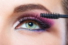 Close up shot of female eye and brush applying mascara Stock Image
