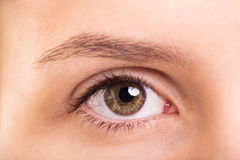Close up shot of a female eye Royalty Free Stock Photo