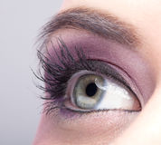 Close-up shot of female eye make-up Stock Images