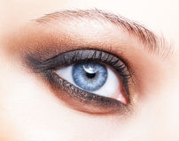 Close-up shot of female eye make-up Royalty Free Stock Images