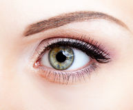 Close-up shot of female eye Stock Photo