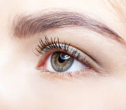 Close-up shot of female eye makeup. Stock Photography