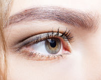 Close-up shot of female eye makeup. Stock Photos