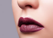 Close up shot of female lips Royalty Free Stock Photography